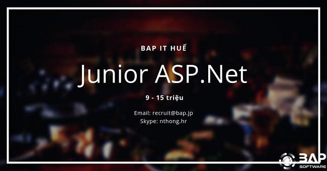 [BAP HUE] JUNIOR ASP.NET WANTED