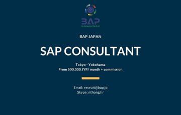 (English) [BAP JAPAN] SAP Consultant