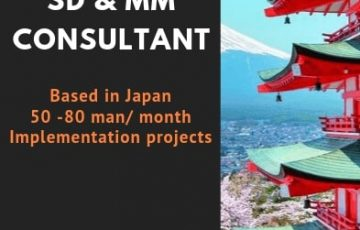 [BAP JAPAN] SD & MM SAP Consultants