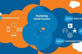 SalesForce cloud for dummies