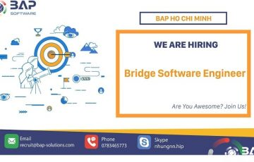 Bridge Software Engineer – BrSE