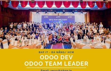 (English) Da Nang/HCM – Python/Odoo Developer