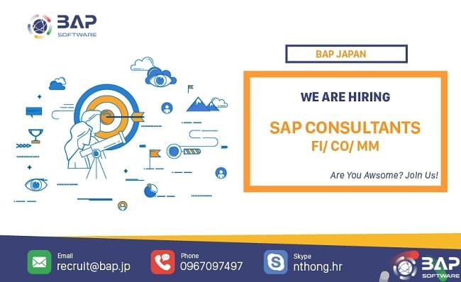 [BAP JAPAN] SAP Consultant