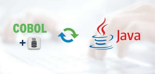 Process of Cobol to Java