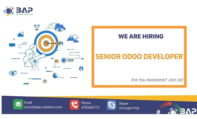 (English) Senior Odoo Developer