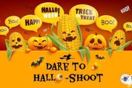 (English) DARE TO HALLO – SHOOT EVENT