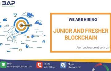 Junior and Fresher Blockchain Developer